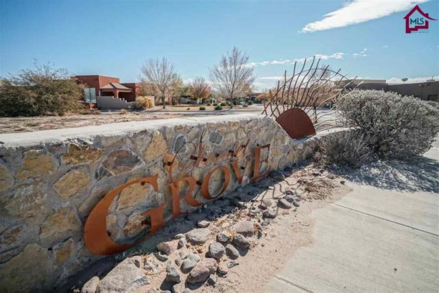 2005 Calle De Ninos, Las Cruces, NM 88005 (MLS #1701688) :: Steinborn & Associates Real Estate
