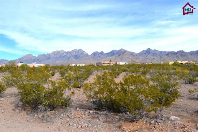 00 Modoc Trail, Las Cruces, NM 88011 (MLS #1701823) :: Austin Tharp Team