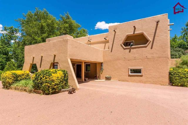 722 Engler Road, Las Cruces, NM 88005 (MLS #1701866) :: Steinborn & Associates Real Estate