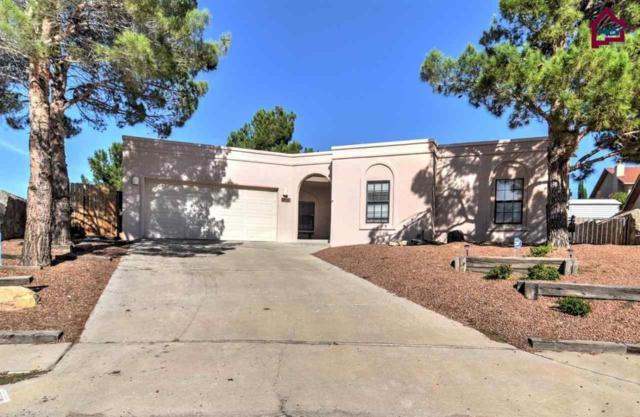5012 Sun Shadow Place, Las Cruces, NM 88011 (MLS #1702149) :: Steinborn & Associates Real Estate