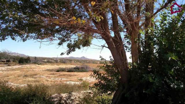 1020 Orgot Road, Mesilla Park, NM 88047 (MLS #1702942) :: Steinborn & Associates Real Estate