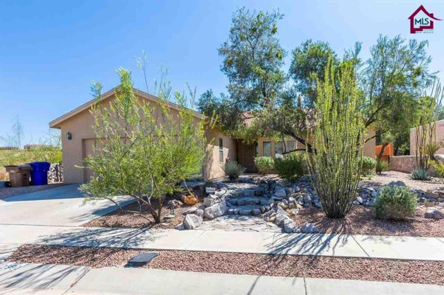 2890 Morning Star Drive, Las Cruces, NM 88011 (MLS #1703039) :: Austin Tharp Team