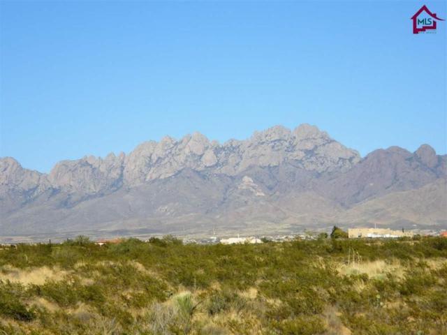 5495 George Catlin Road, Las Cruces, NM 88011 (MLS #1703077) :: Steinborn & Associates Real Estate