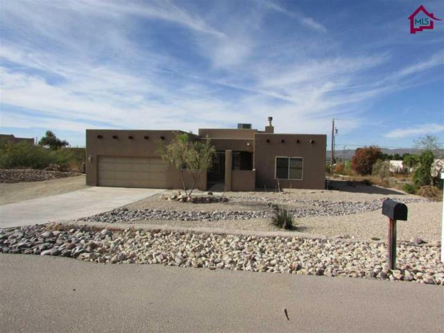 5155 Apache Trail, Las Cruces, NM 88012 (MLS #1703283) :: Steinborn & Associates Real Estate