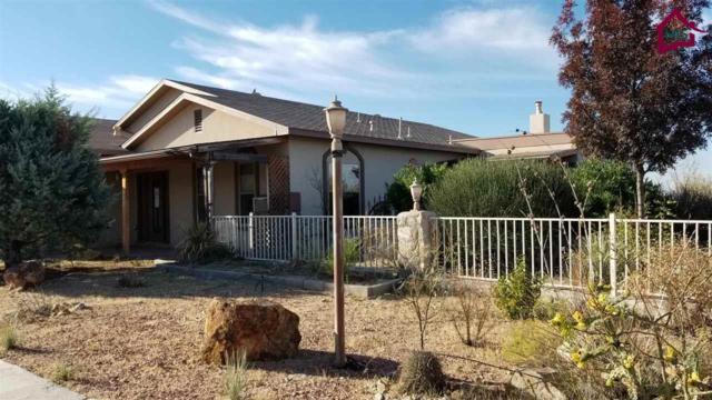 1600 Rincon De Amigos, Las Cruces, NM 88012 (MLS #1703431) :: Steinborn & Associates Real Estate
