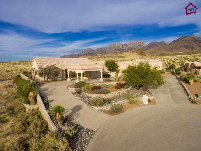4820 Mother Lode Trail, Las Cruces, NM 88011 (MLS #1703448) :: Better Homes and Gardens Real Estate - Steinborn & Associates