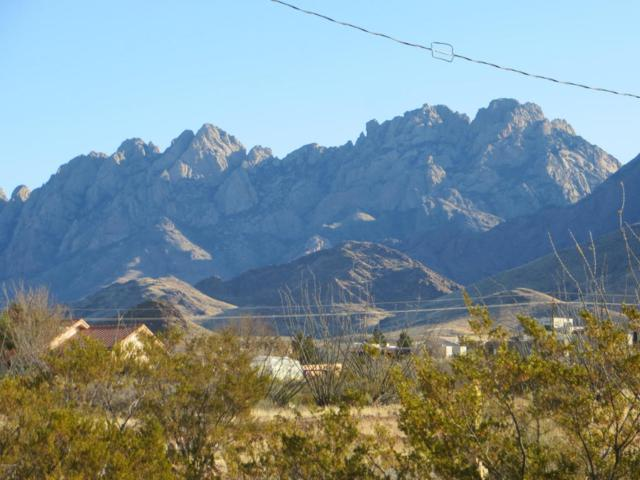Lot 4 Silver King Road, Las Cruces, NM 88011 (MLS #1703464) :: Steinborn & Associates Real Estate