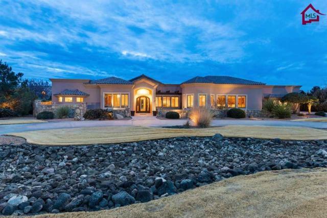 2965 Mesilla Acres Road, Las Cruces, NM 88005 (MLS #1800017) :: Steinborn & Associates Real Estate