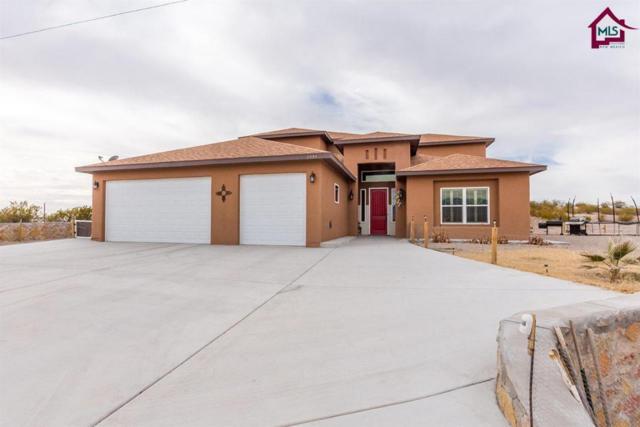 2595 Webb Road, Las Cruces, NM 88012 (MLS #1800127) :: Steinborn & Associates Real Estate