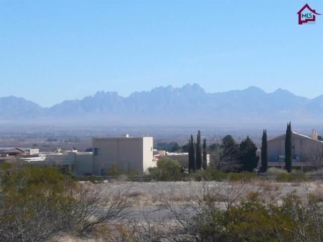 0000 Calle Murillo, Las Cruces, NM 88007 (MLS #1800289) :: Steinborn & Associates Real Estate
