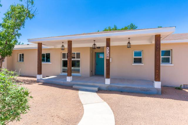 528 Phillips Drive, Las Cruces, NM 88005 (MLS #1806151) :: Steinborn & Associates Real Estate