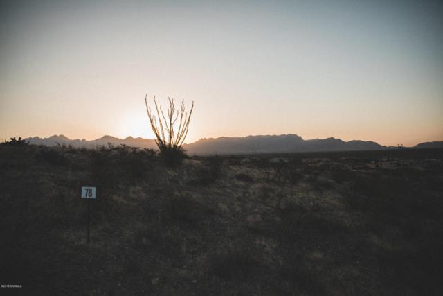 5661 Camino Escondida, Las Cruces, NM 88011 (MLS #1806225) :: Steinborn & Associates Real Estate