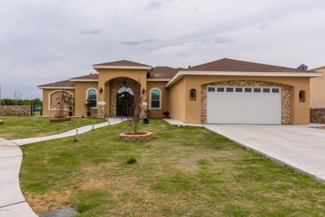 273 Wall Avenue, Las Cruces, NM 88001 (MLS #1806294) :: Steinborn & Associates Real Estate