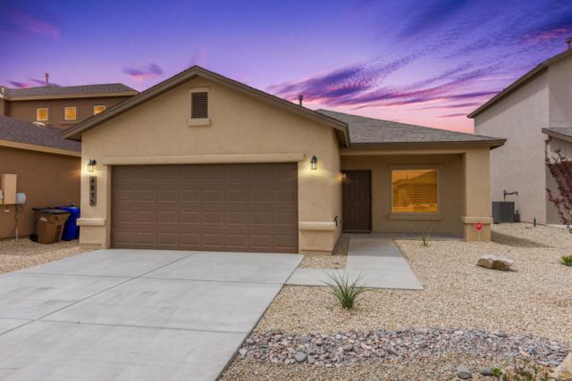 4855 Villeta Avenue, Las Cruces, NM 88012 (MLS #1806565) :: Steinborn & Associates Real Estate