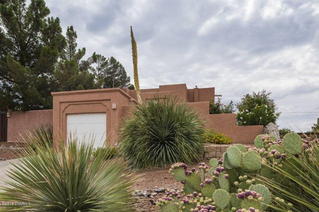 3132 Hillrise Drive, Las Cruces, NM 88011 (MLS #1806734) :: Steinborn & Associates Real Estate