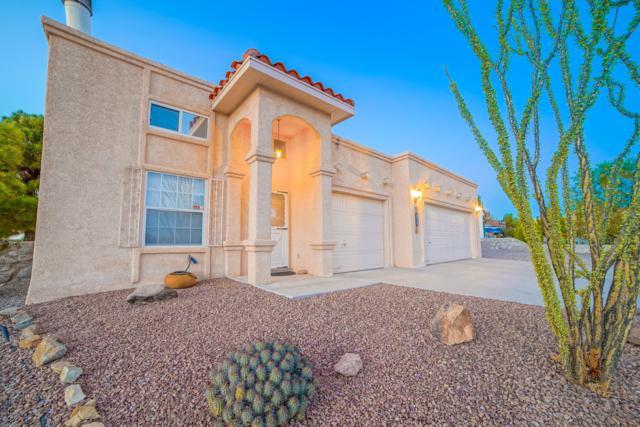 1981 Oxbow Court, Las Cruces, NM 88012 (MLS #1807315) :: Steinborn & Associates Real Estate