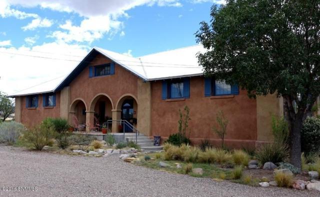 1 Old School House Road, Hillsboro, NM 88042 (MLS #1807452) :: Steinborn & Associates Real Estate