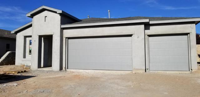 4103 Bravia Dove Loop, Las Cruces, NM 88001 (MLS #1807494) :: Austin Tharp Team