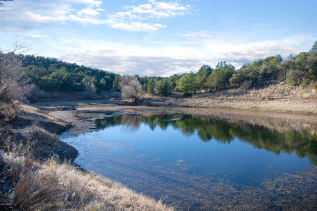 00 Simmens Ranch Rd., SILVER CITY, NM 88061 (MLS #1808382) :: Arising Group Real Estate Associates