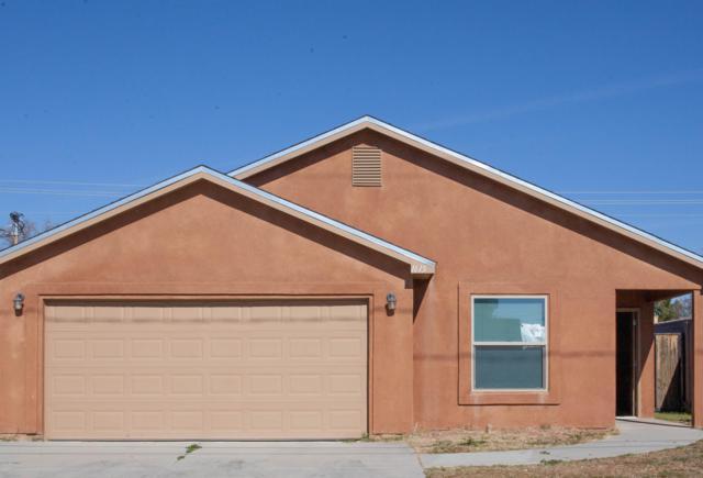 1615 E Boutz Road, Las Cruces, NM 88001 (MLS #1900081) :: Steinborn & Associates Real Estate