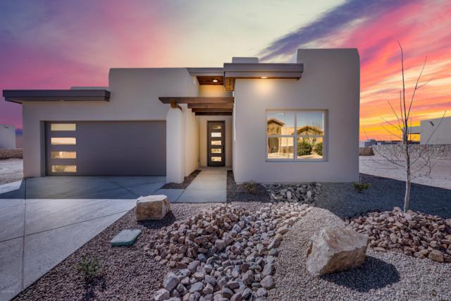 3672 Santa Minerva Avenue, Las Cruces, NM 88012 (MLS #1900266) :: Steinborn & Associates Real Estate