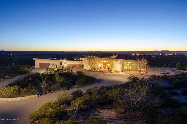 5664 Georgia O'keefe, Las Cruces, NM 88011 (MLS #1900751) :: Steinborn & Associates Real Estate