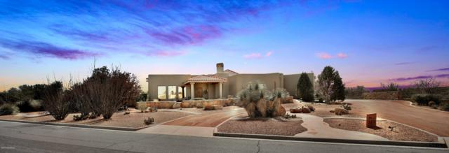 5370 Superstition Drive, Las Cruces, NM 88011 (MLS #1900792) :: Steinborn & Associates Real Estate