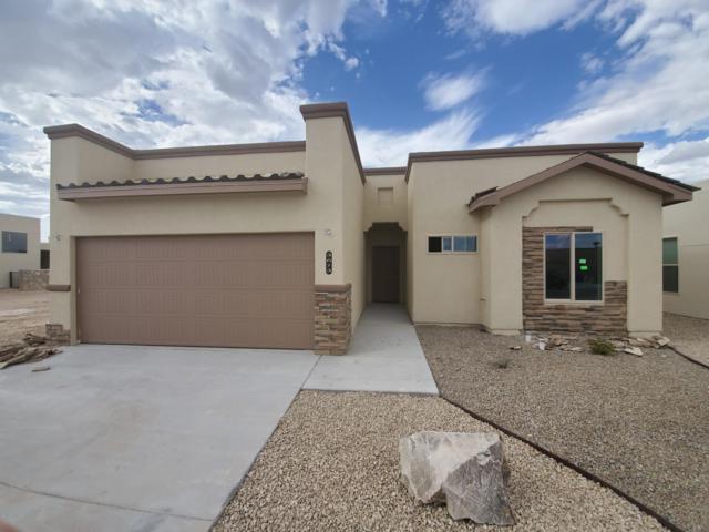 3673 W Maya Court, Las Cruces, NM 88012 (MLS #1900889) :: Steinborn & Associates Real Estate