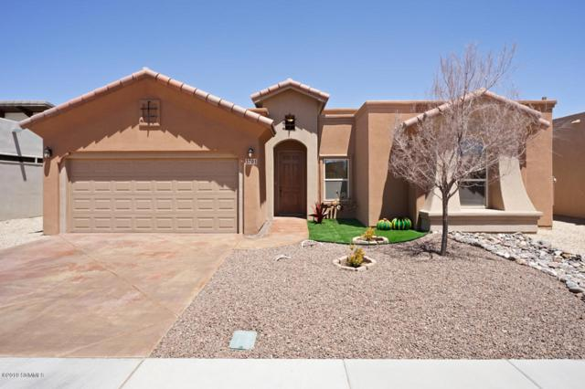 3701 Santa Minerva Avenue, Las Cruces, NM 88012 (MLS #1901259) :: Steinborn & Associates Real Estate