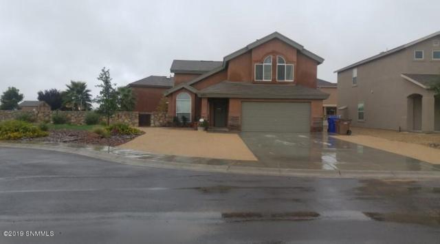 2801 San Elizario Court, Las Cruces, NM 88007 (MLS #1901289) :: Steinborn & Associates Real Estate