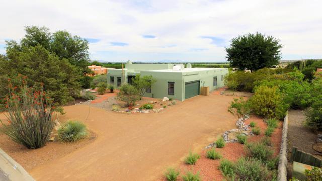 6505 Vista De Oro, Las Cruces, NM 88007 (MLS #1901345) :: Arising Group Real Estate Associates