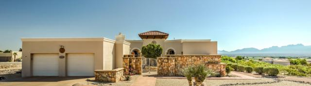 5660 Spanish Pointe Road, Las Cruces, NM 88007 (MLS #1901691) :: Steinborn & Associates Real Estate