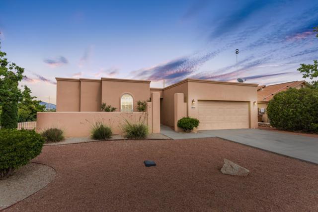 5988 Leaping Lizard Loop, Las Cruces, NM 88012 (MLS #1902259) :: Steinborn & Associates Real Estate
