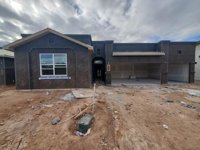 6073 Arosa Street, Las Cruces, NM 88012 (MLS #1903018) :: Steinborn & Associates Real Estate