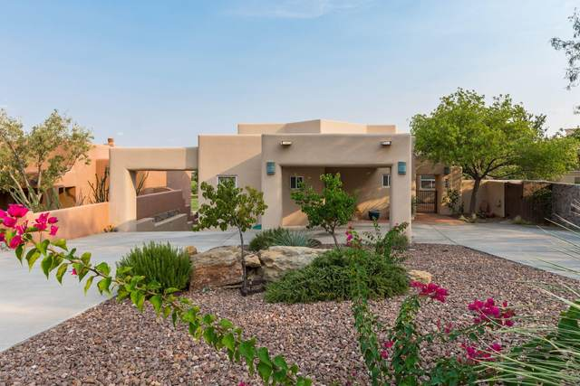 6795 Via Campestre, Las Cruces, NM 88007 (MLS #2000556) :: Agave Real Estate Group