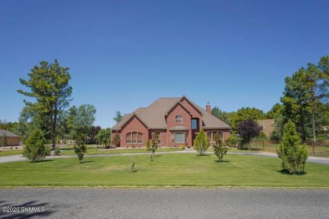 4669 Forest Park Drive, Las Cruces, NM 88007 (MLS #2001775) :: Las Cruces Real Estate Professionals