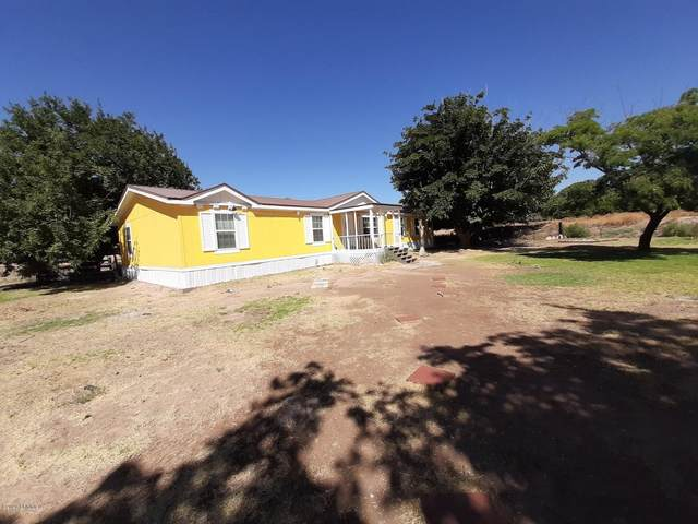 230 Cactus Patch Way, Las Cruces, NM 88007 (MLS #2001788) :: Better Homes and Gardens Real Estate - Steinborn & Associates
