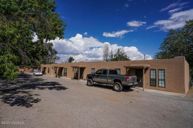 747 Watson Lane, Las Cruces, NM 88005 (MLS #2001958) :: Better Homes and Gardens Real Estate - Steinborn & Associates