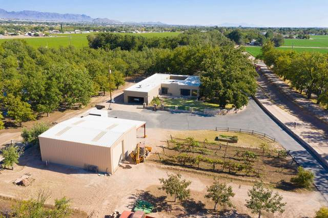 820 Engler Road, Las Cruces, NM 88007 (MLS #2002762) :: United Country Real Estate Revolution