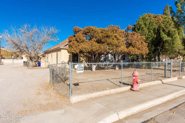 228 W Mountain Avenue, Las Cruces, NM 88005 (MLS #2100078) :: Better Homes and Gardens Real Estate - Steinborn & Associates