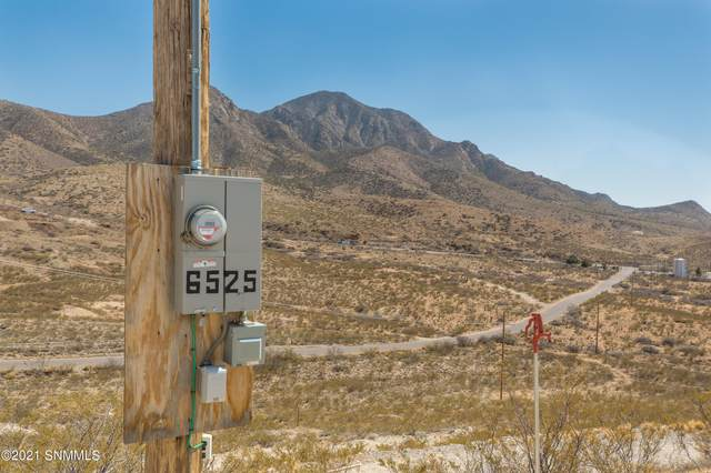 6525 County Road D087 Road, Organ, NM 88052 (MLS #2100899) :: Better Homes and Gardens Real Estate - Steinborn & Associates