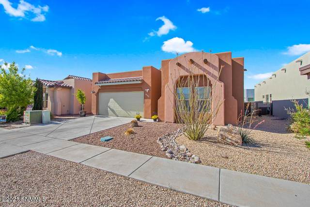 3635 Santa Cecilia Avenue, Las Cruces, NM 88012 (MLS #2101255) :: Agave Real Estate Group