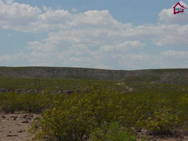 LOT 3 Tahnee Mara Street, Rincon, NM 87940 (MLS #1302252) :: Better Homes and Gardens Real Estate - Steinborn & Associates