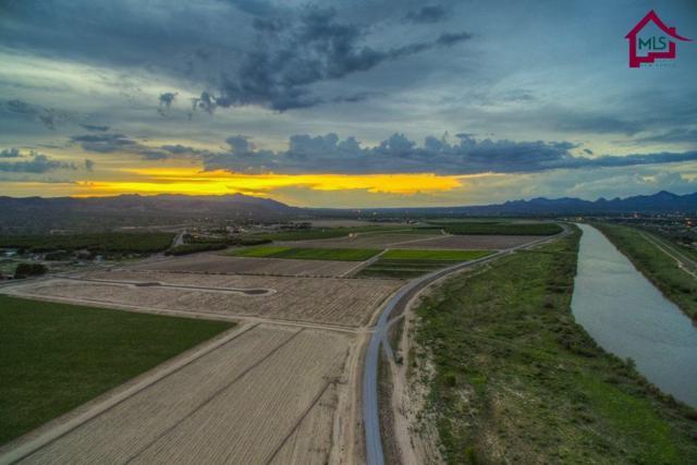 3801 Valle Verde Court, Las Cruces, NM 88007 (MLS #1401334) :: Steinborn & Associates Real Estate