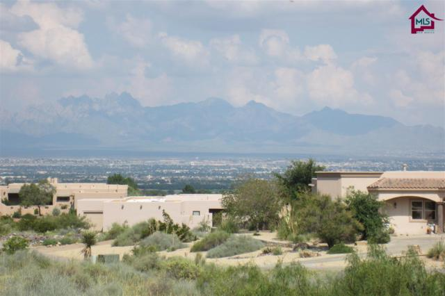 8061 Renoir Loop, Las Cruces, NM 88007 (MLS #1502497) :: Steinborn & Associates Real Estate