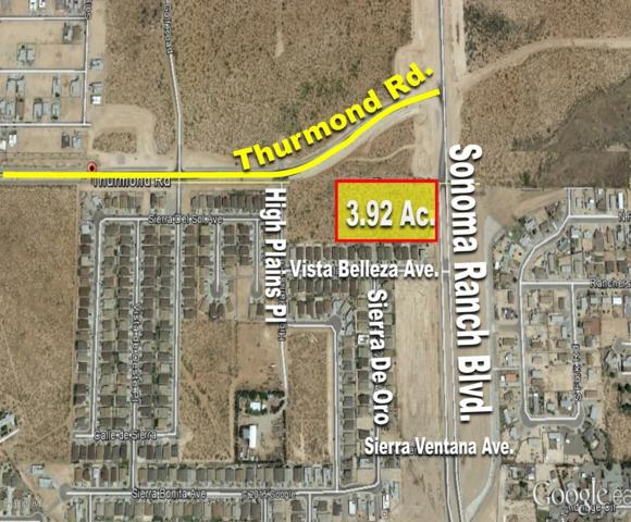0 Thurmond Road, Las Cruces, NM 88012 (MLS #1502781) :: Austin Tharp Team