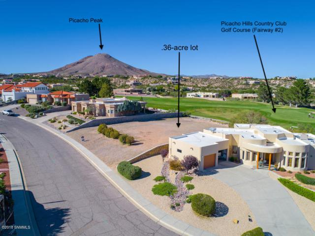 6740 Via Emma, Las Cruces, NM 88007 (MLS #1503114) :: Steinborn & Associates Real Estate