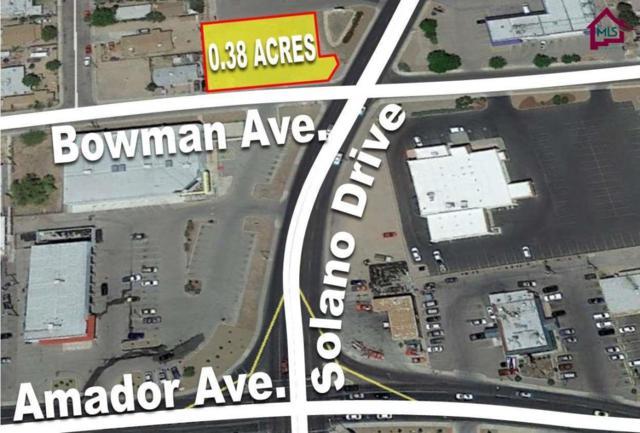 1395 E Bowman Avenue, Las Cruces, NM 88001 (MLS #1503200) :: Steinborn & Associates Real Estate