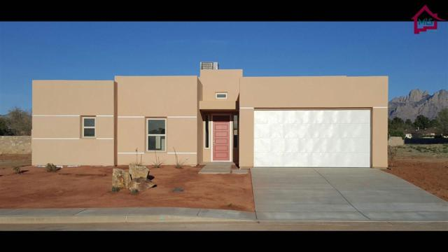 5910 Big Jim Drive, Las Cruces, NM 88001 (MLS #1700026) :: Steinborn & Associates Real Estate