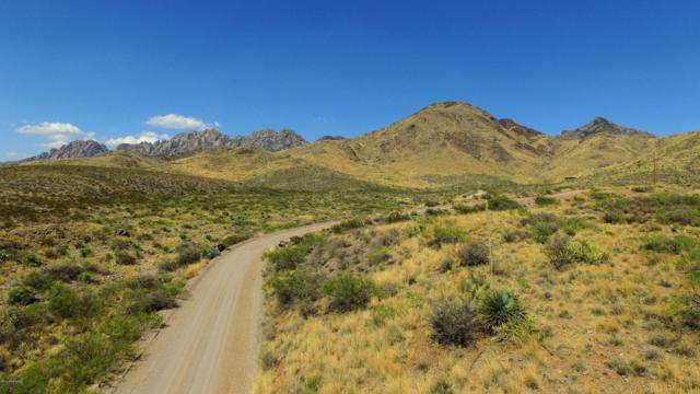 Lot 3 Spur Ridge Road, Las Cruces, NM 88011 (MLS #1702039) :: Austin Tharp Team